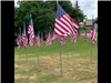 Memorial Flags on McNee Hill 2019