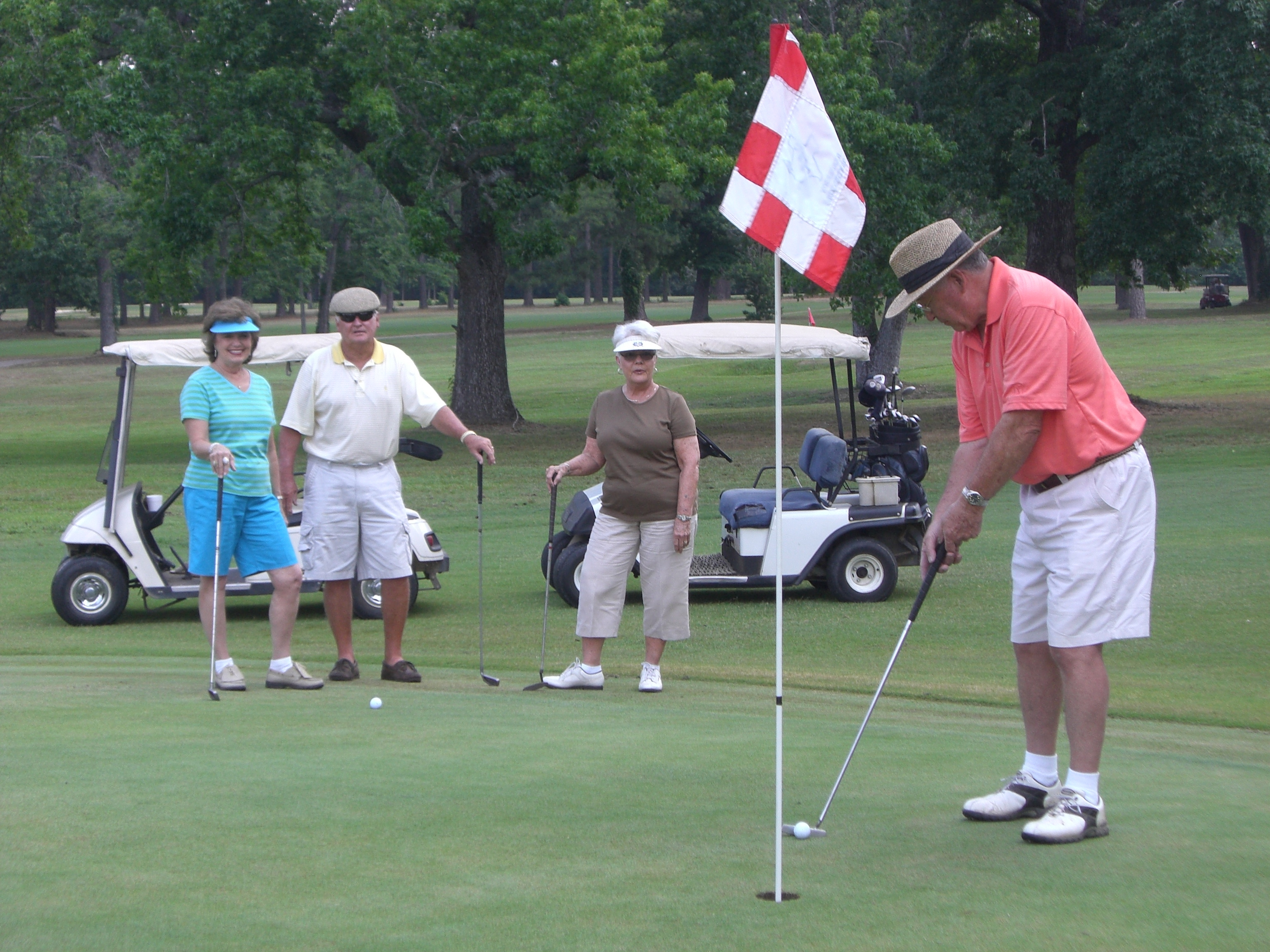 golf horizontal 2010.jpg